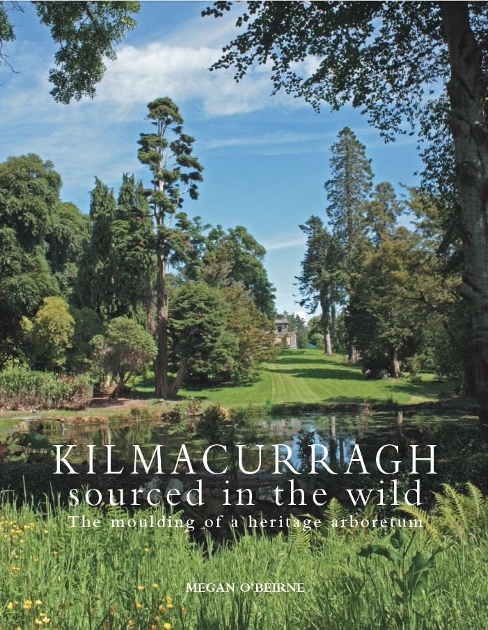 Kilmacurragh book cover